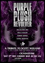 purpleplushrev_dec3_web